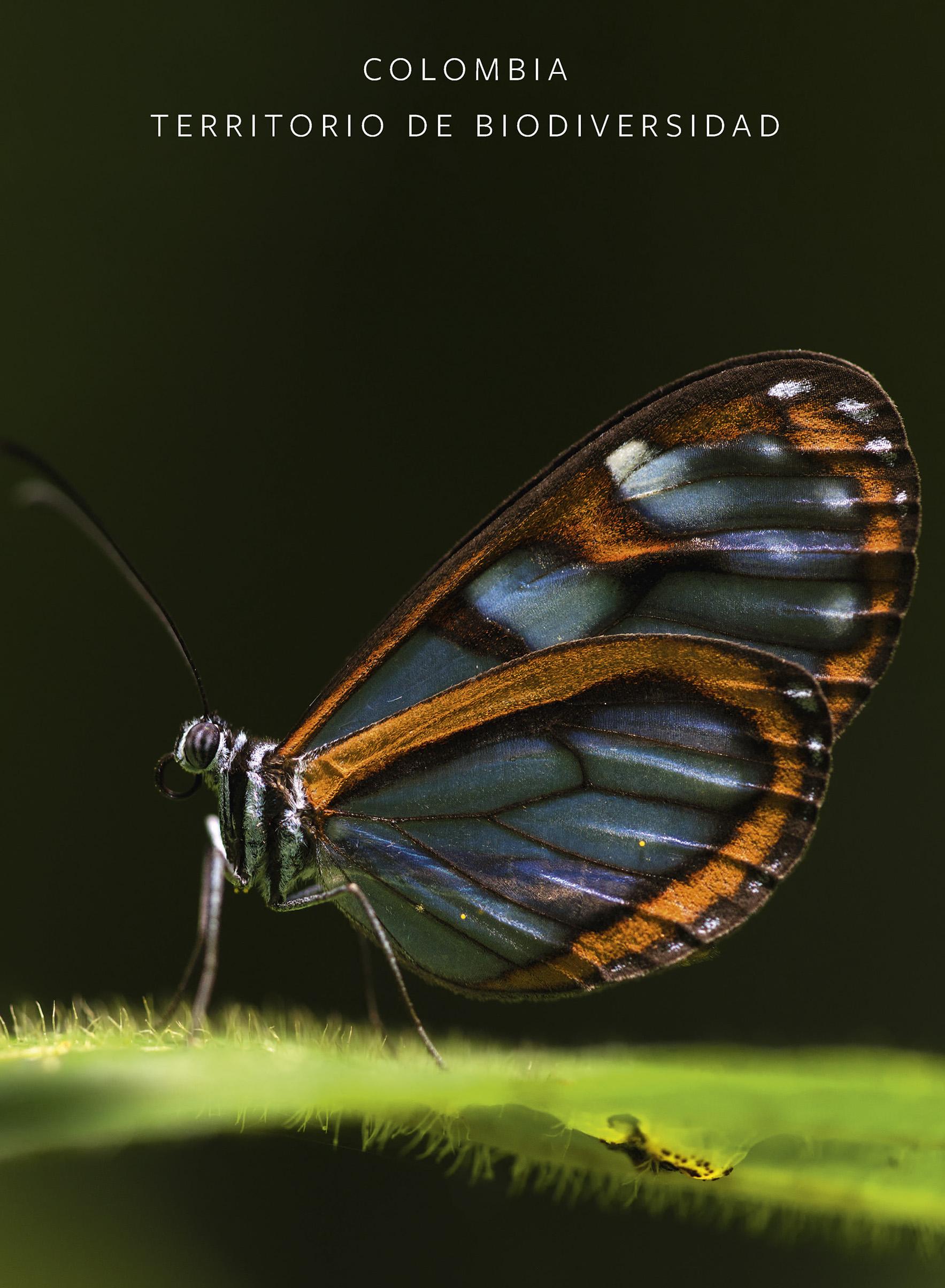 Colombia territorio de biodiversidad